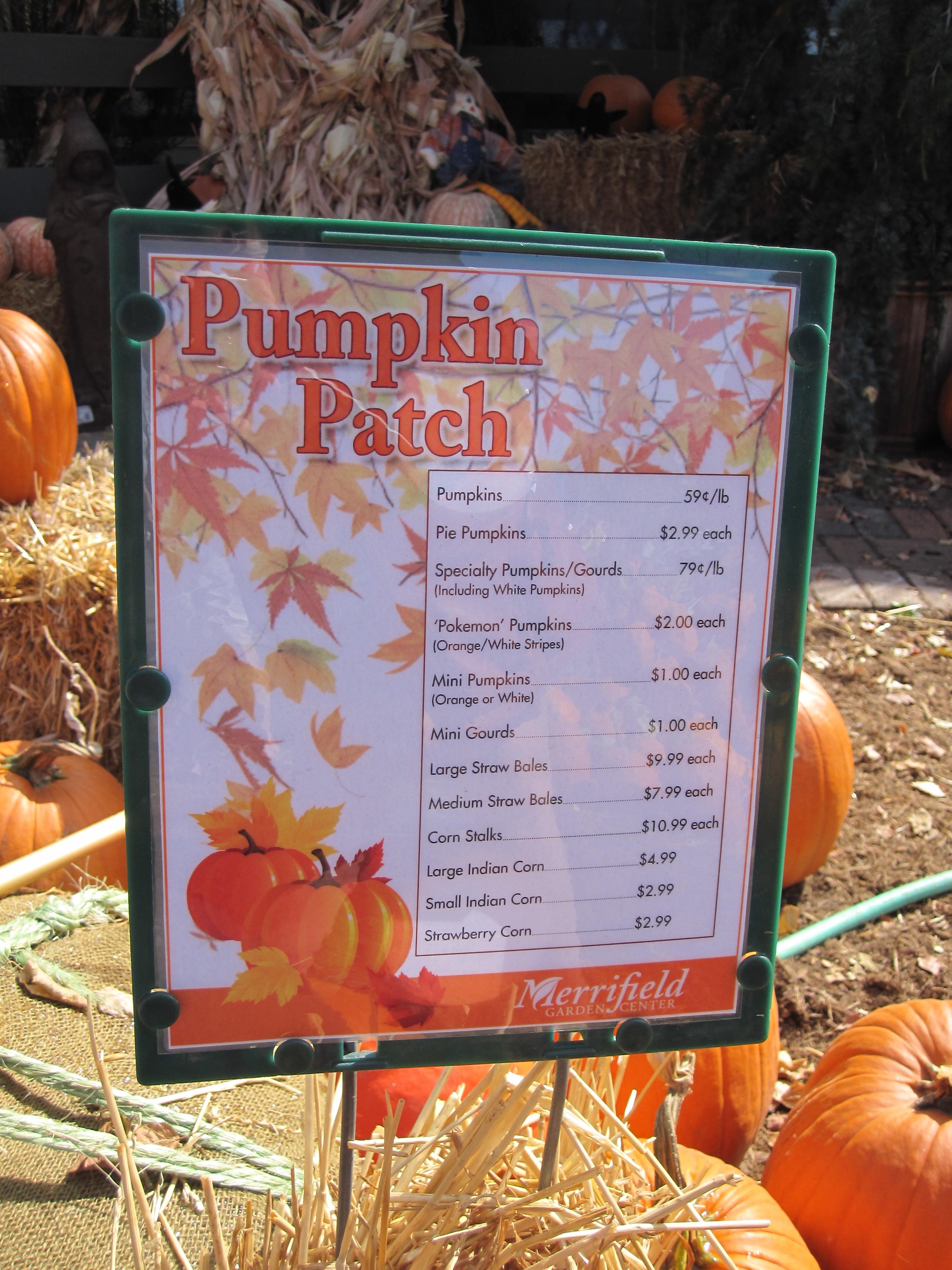 Pumpkin Prices At Merrifield Garden Center